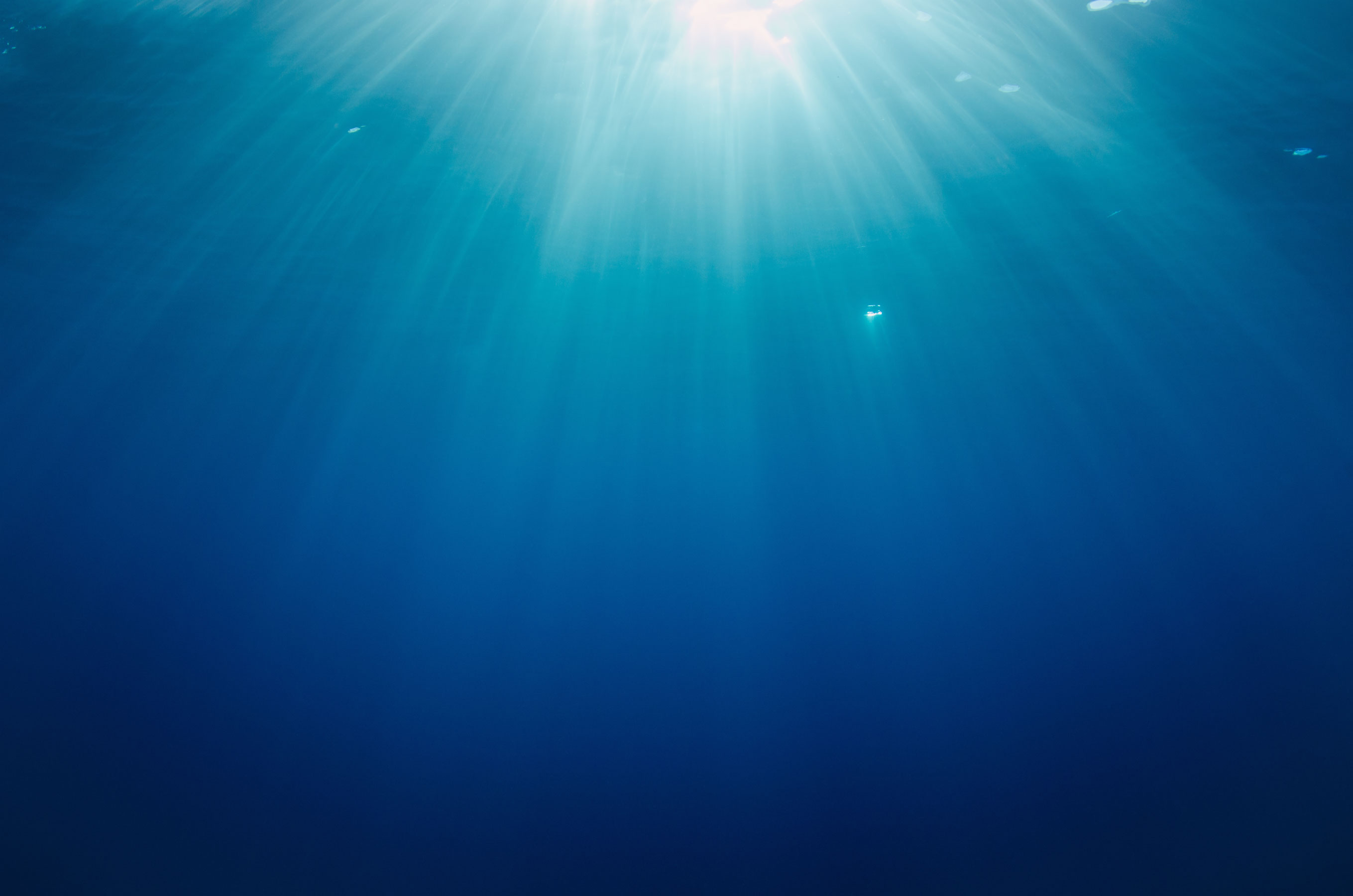 Light in the ocean
